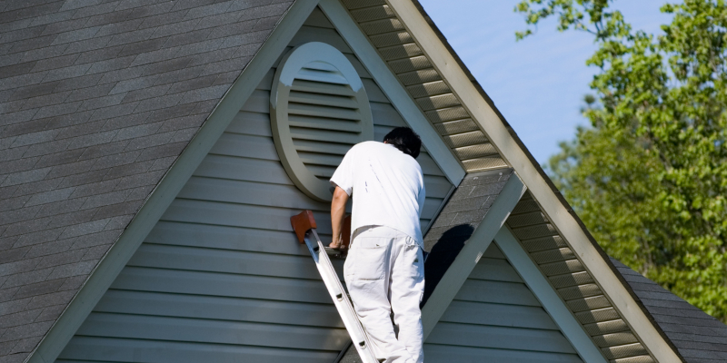 exterior painting professional